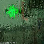shooting in the rain... (12)