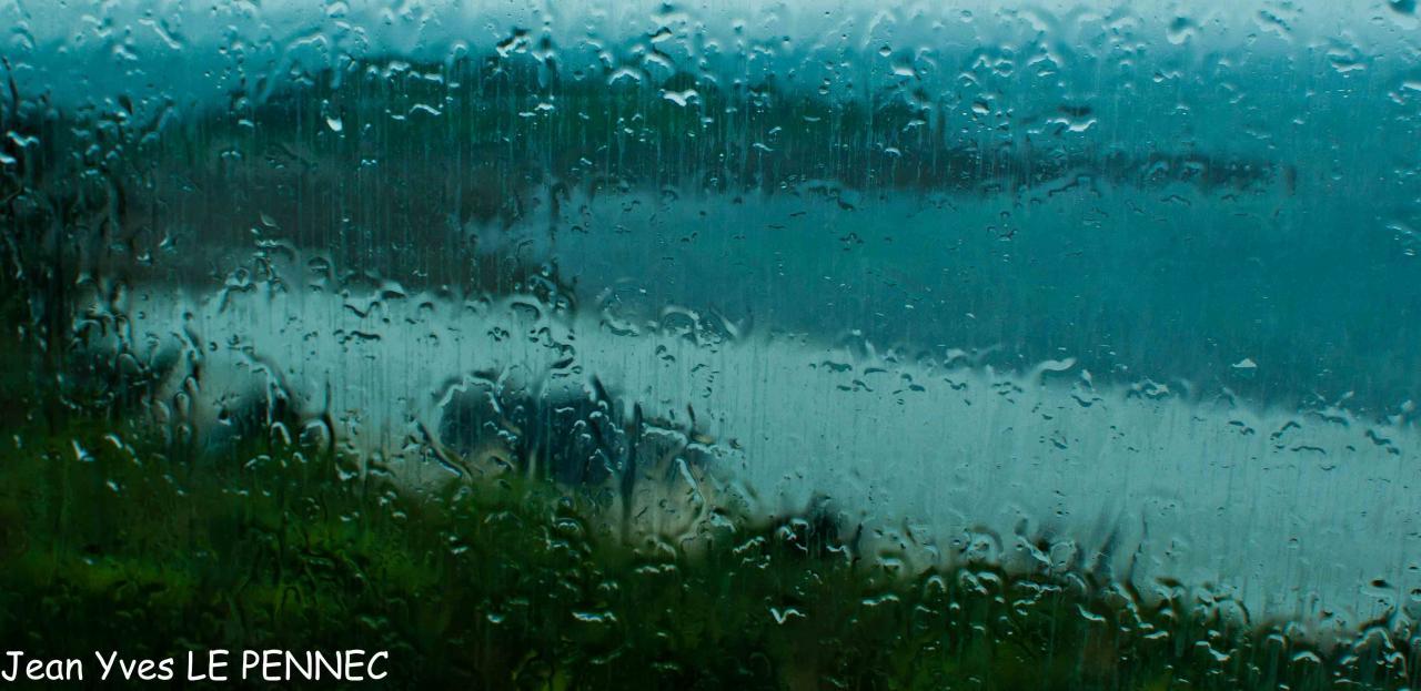 shooting in the rain... (14)