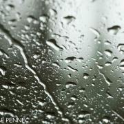 shooting in the rain... (19)