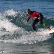 Surf Perros-11