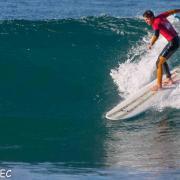 Surf Perros-3