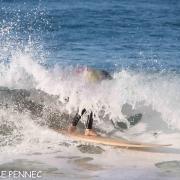 Surf Perros-4