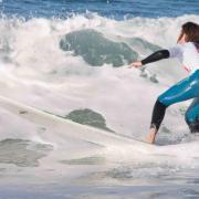 Surf Perros-6